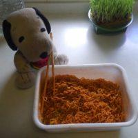 激辛ペヤング超超超大盛GIGAMAXをアレンジ!味変で飽きることなく完食♪