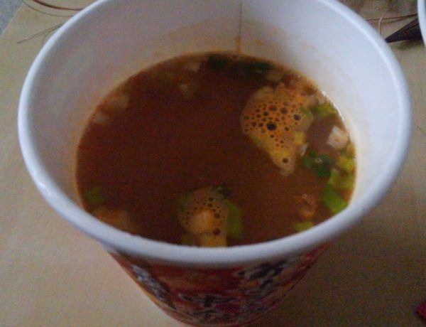 蒙古タンメン中本 豆腐スープ 完成図